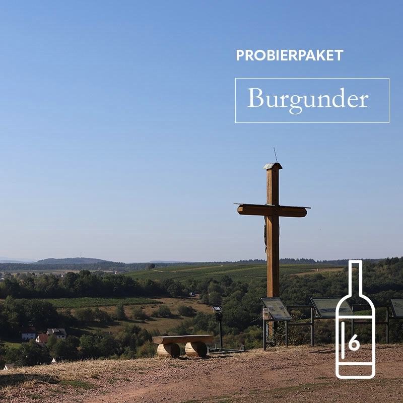 Prinz Salm Probierpaket Burgunder